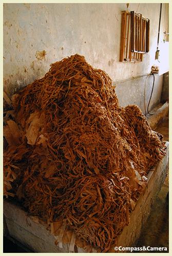 Jungshi Handmade Paper Factory
