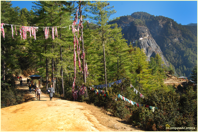 Trail to Tiger's Nest