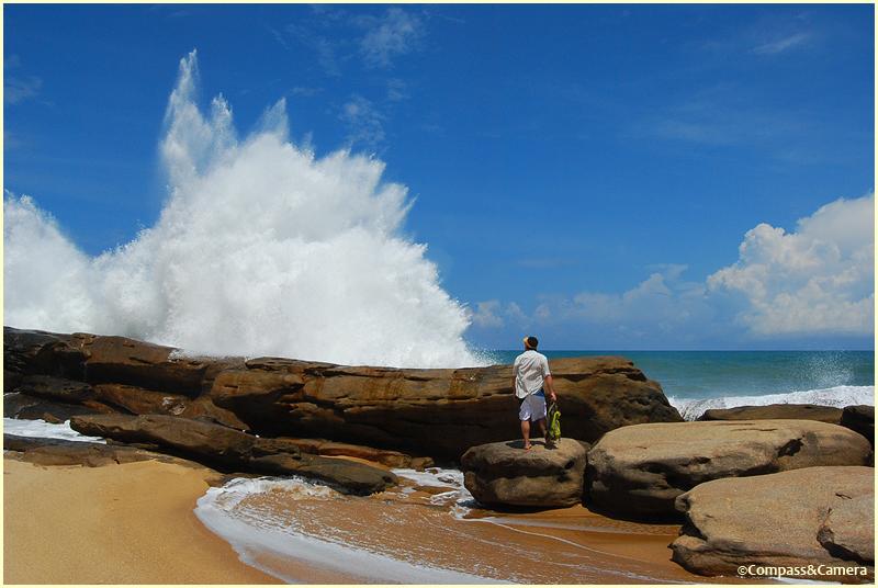 Yala coastline