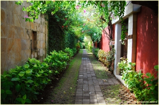 Path to the villa
