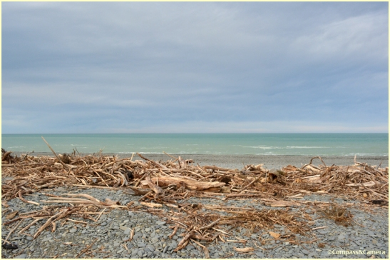 Beach near Timaru