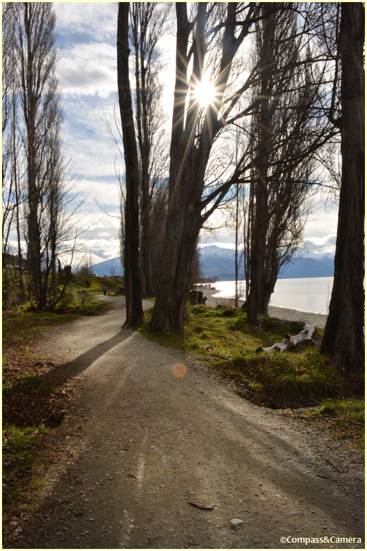 Trail to Lake Wanaka