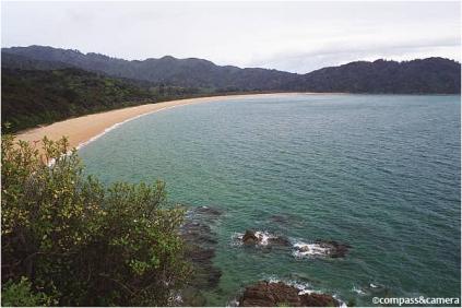 Trail to Totaranui