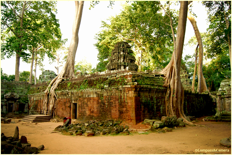 Ta Phrom near Siem Reap, Cambodia