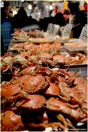 Seafood smorgasbord