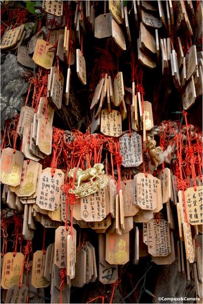 Wishing Tree in Tainan, Taiwan