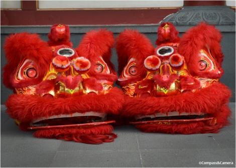 Lion heads