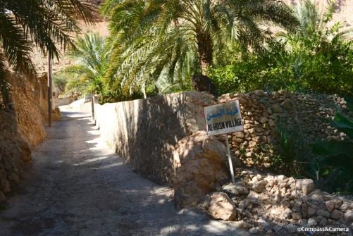 Road into Wadi Tiwi
