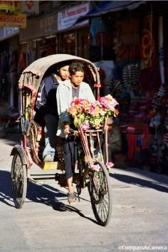 Blooming rickshaw