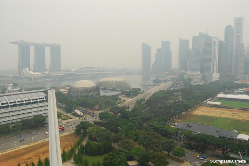 """The """"haze"""" from mass rainforest destruction"""
