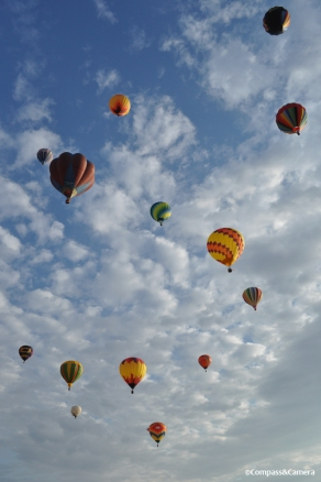 Reno Balloon Race