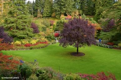 Butchart Gardens :: Vancouver Island, Canada