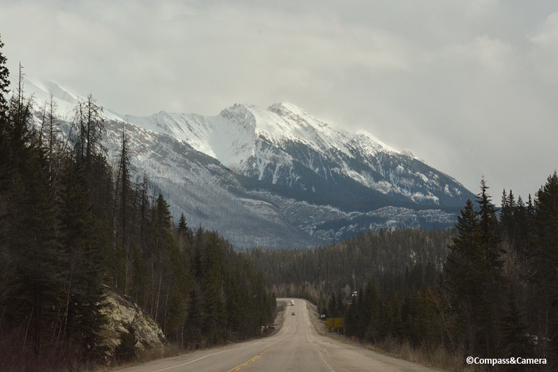 Somewhere between Vancouver and Lake Louise