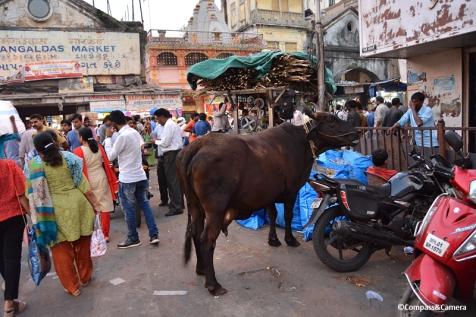 Streets of Mumbai, India