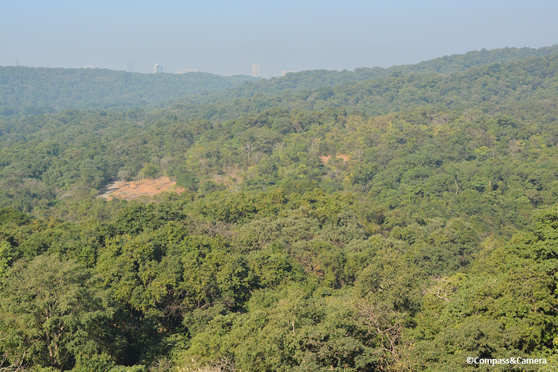 View from atop the Kanheri Caves, Mumbai India