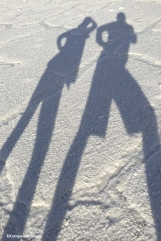 Salty Shadows
