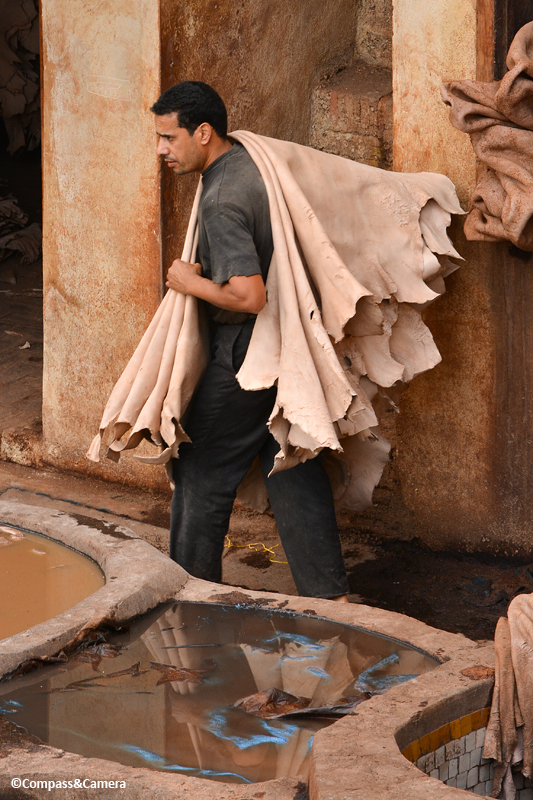 Tannery :: Fez, Morocco
