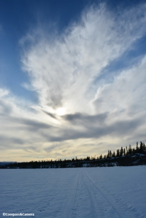 The Yukon River :: Whitehorse, Canada
