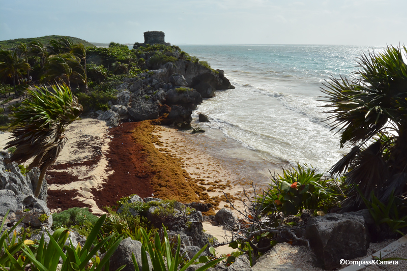 Discouraging forecast for the Mexican Caribbean - The