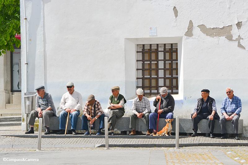 Companionship : Portugal