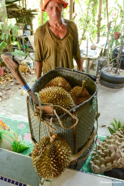 Basket full of durian