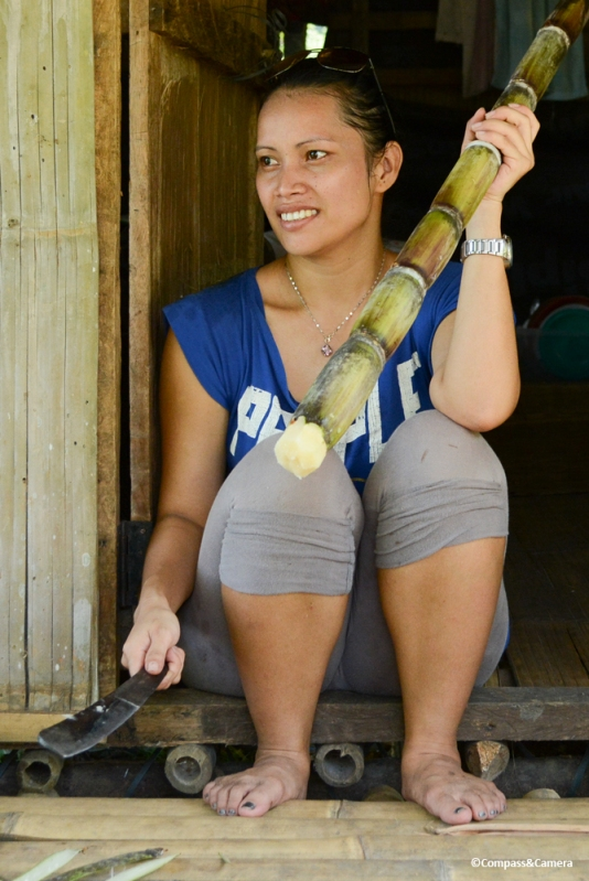 Saloma slices some sugar cane