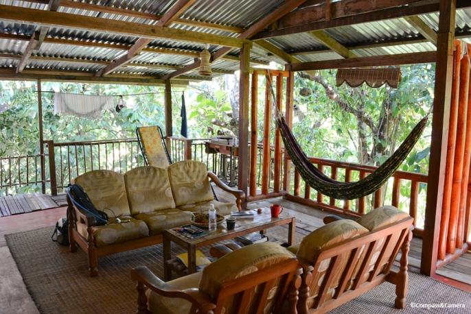 Tree house homestay