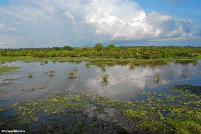 Rainbow over Yala National Park