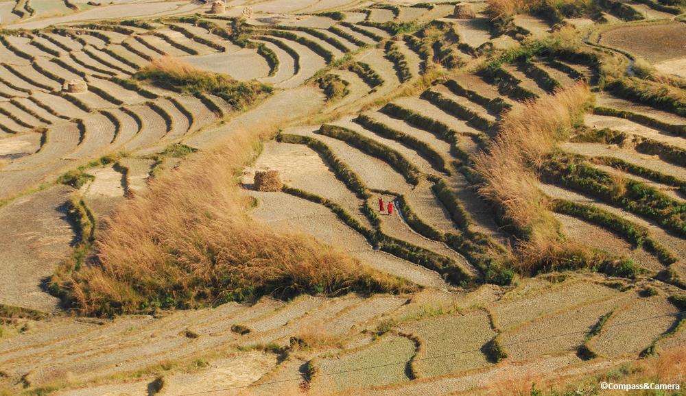 Punakha Countryside