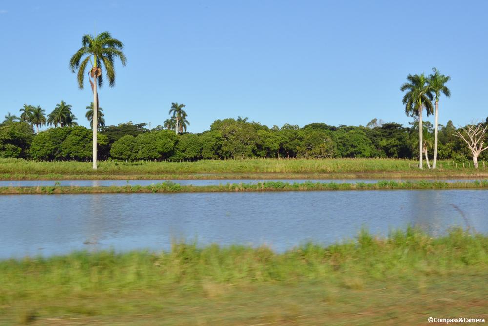Somewhere between Havana and Santiago de Cuba