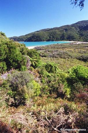 Abel Tasman Coast Trail