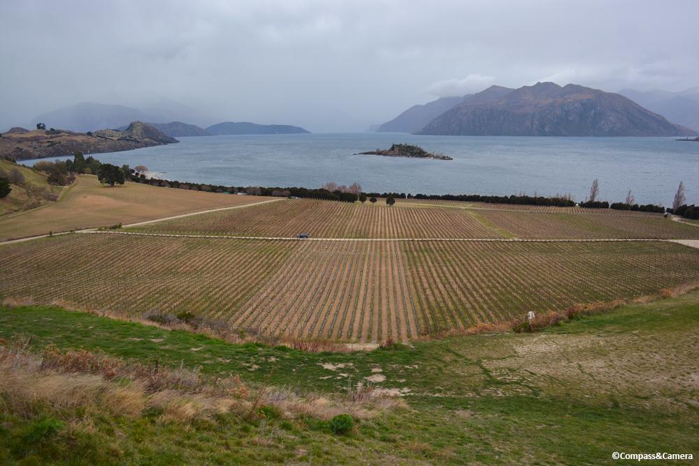 Wanaka Wine Country