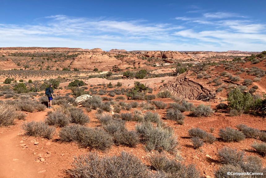 Trail to the slot canyons