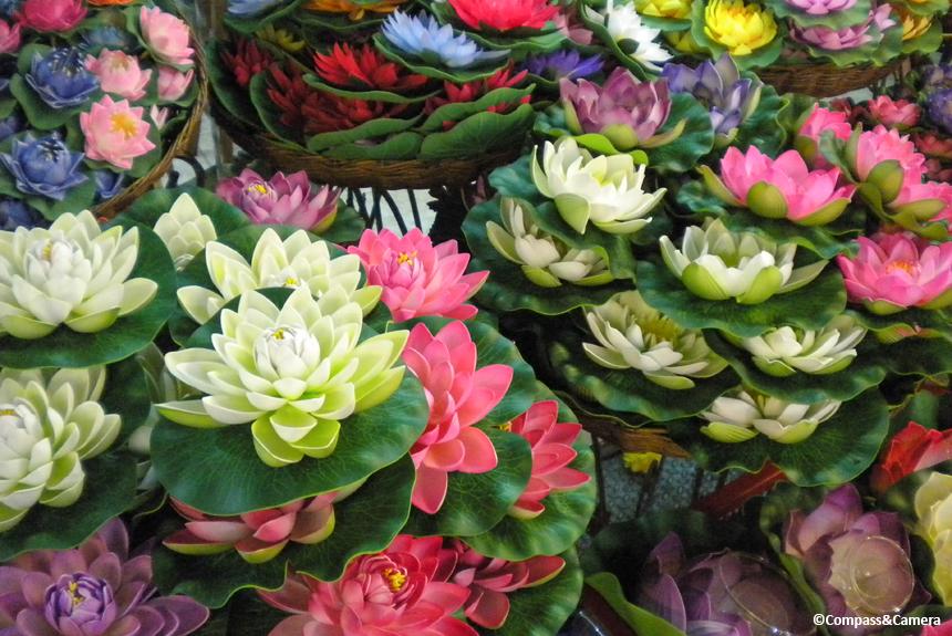 Bangkok blooms