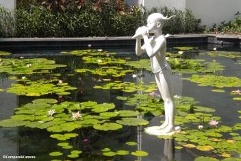 Bangkok lily pond