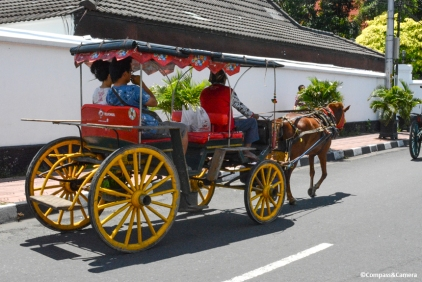 Horse cart to the market